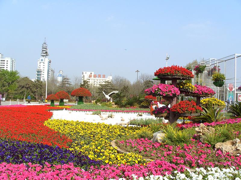 聚美園林立體花壇-公園廣場立體花壇案例