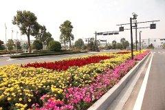 聚美園林立體花壇-市政街道花壇工程案例