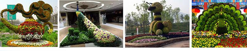 植物景觀花壇-立體花壇案例
